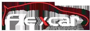 Flex Car